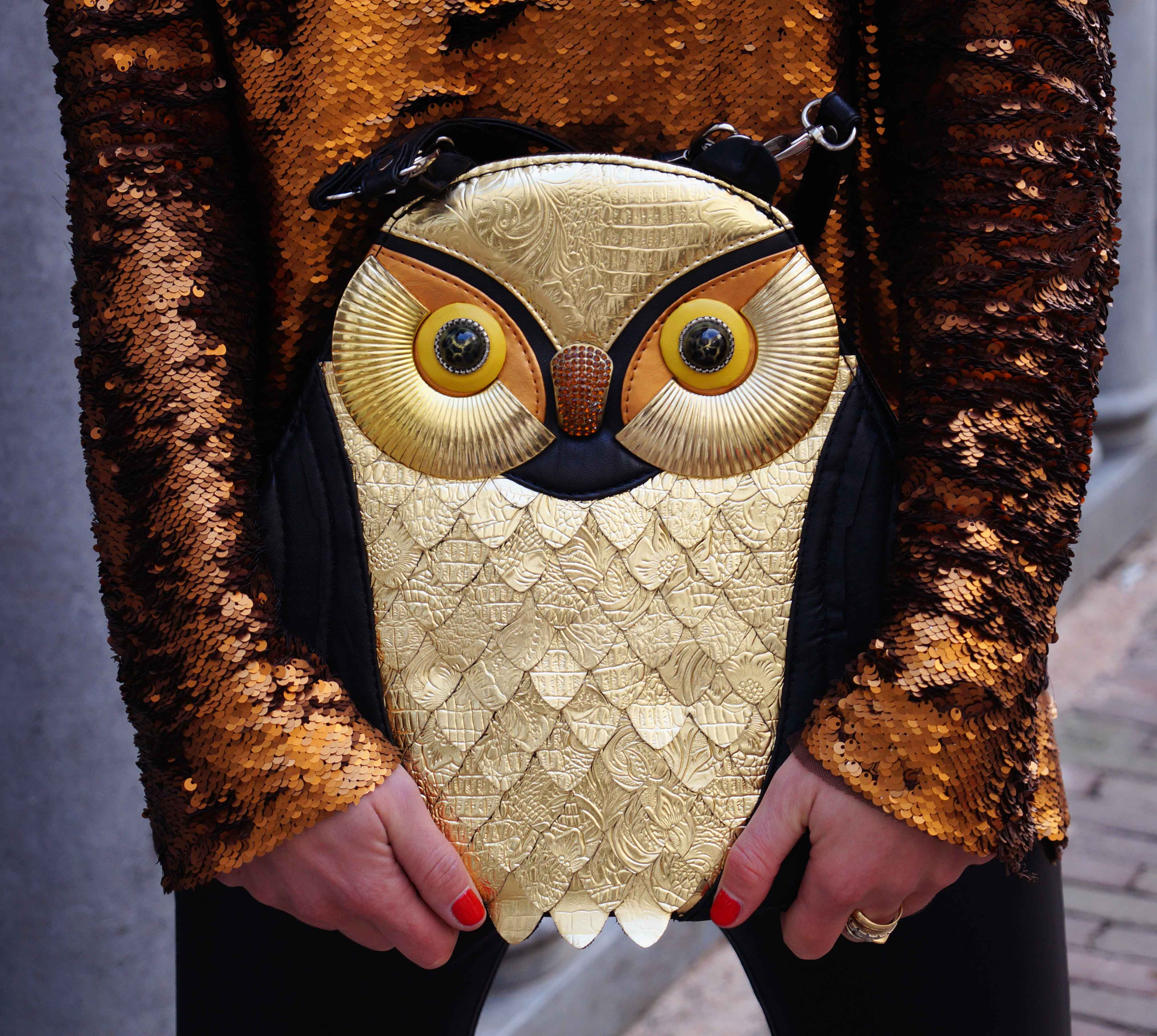 Bag at You - The Bag and the Beast - Holding Owl