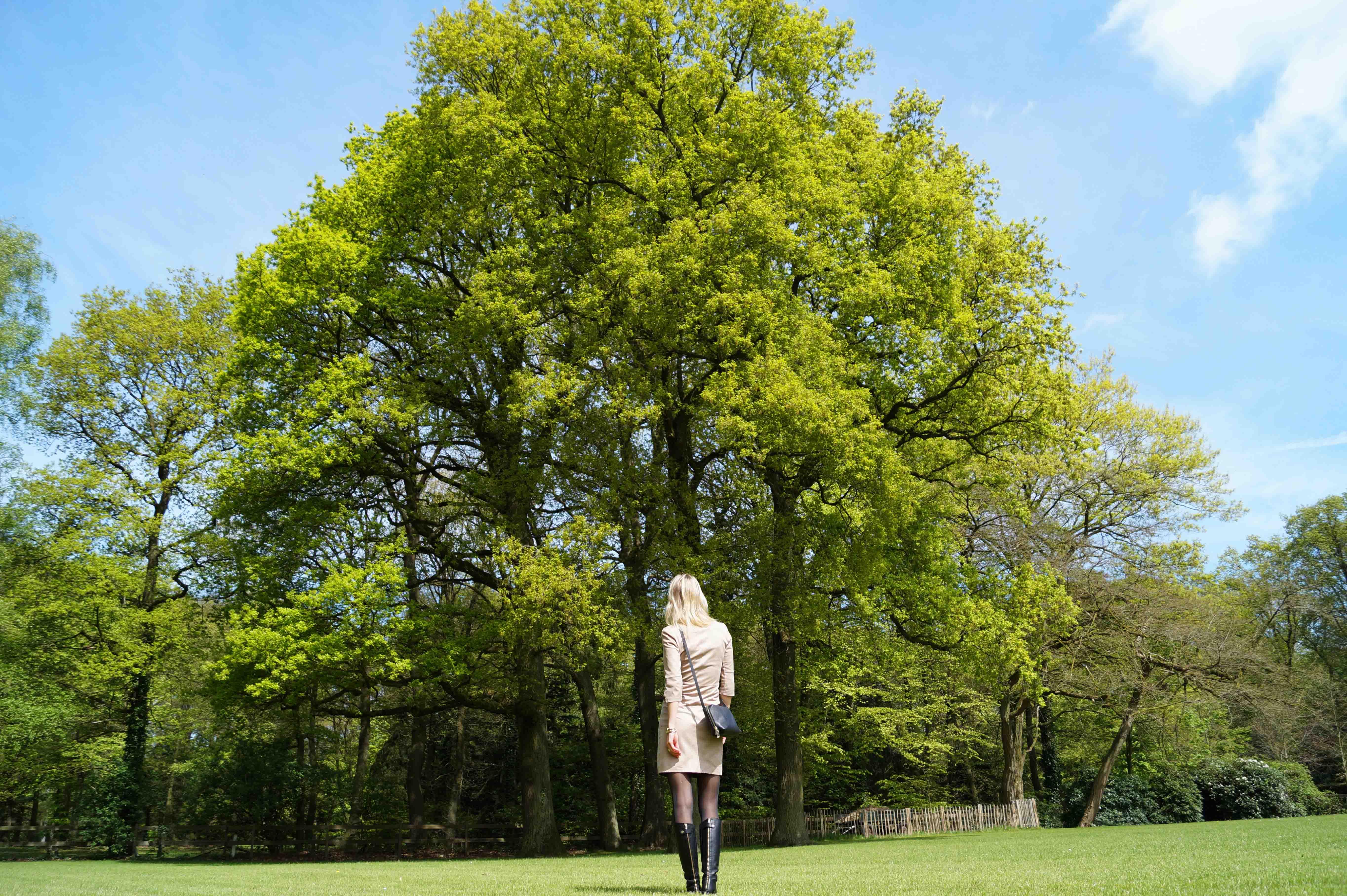 Bag at You - Fashion Blog - MYOMY leather bag - Spring dress and black boots - Zwarte tas en laarzen en lente oufit - big tree