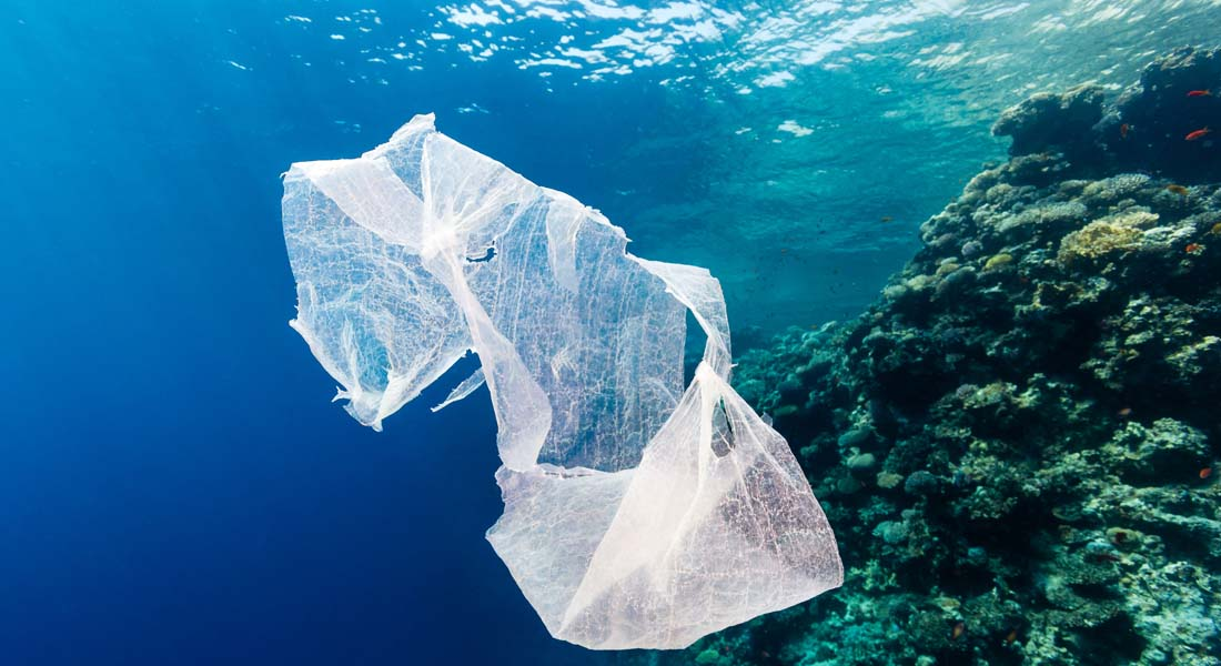 Bag at You - Fashion Blog - Plastic bag pollution and fashionable alternatives