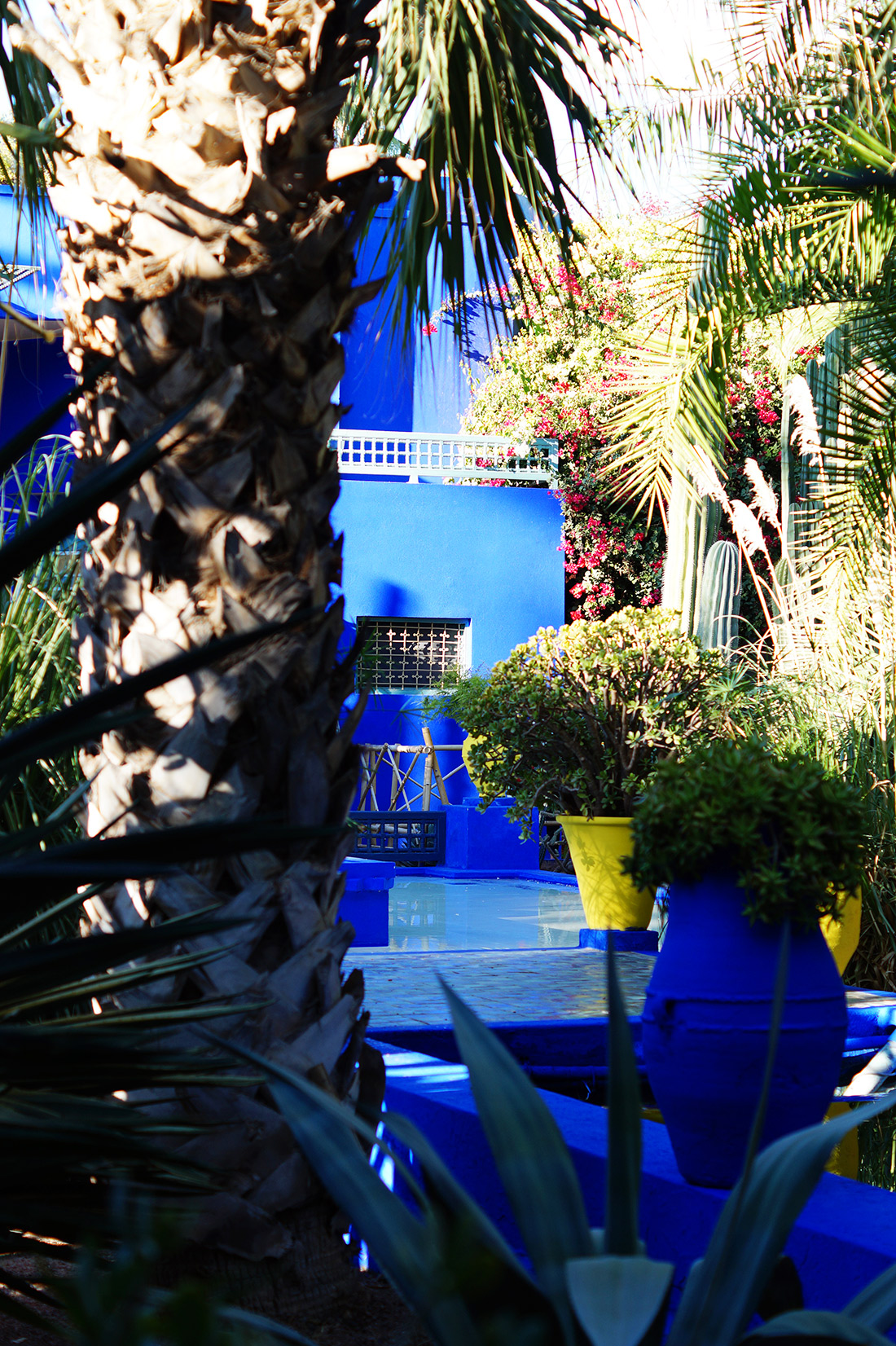 Bag-at-you---Fashion-blog---Postcard-from-Marrakesh---Jardin-Majorelle