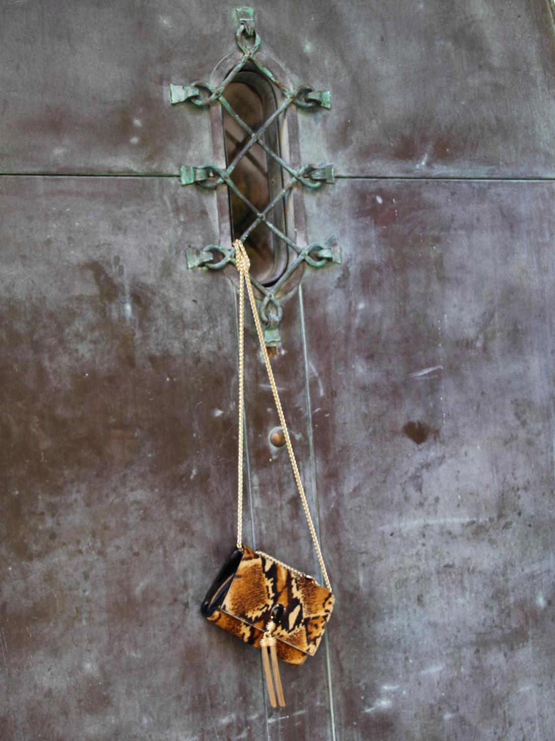 Bag-at-you---Fashion-blog---Tosca-Blu-Bag---Fashionable-python-bag