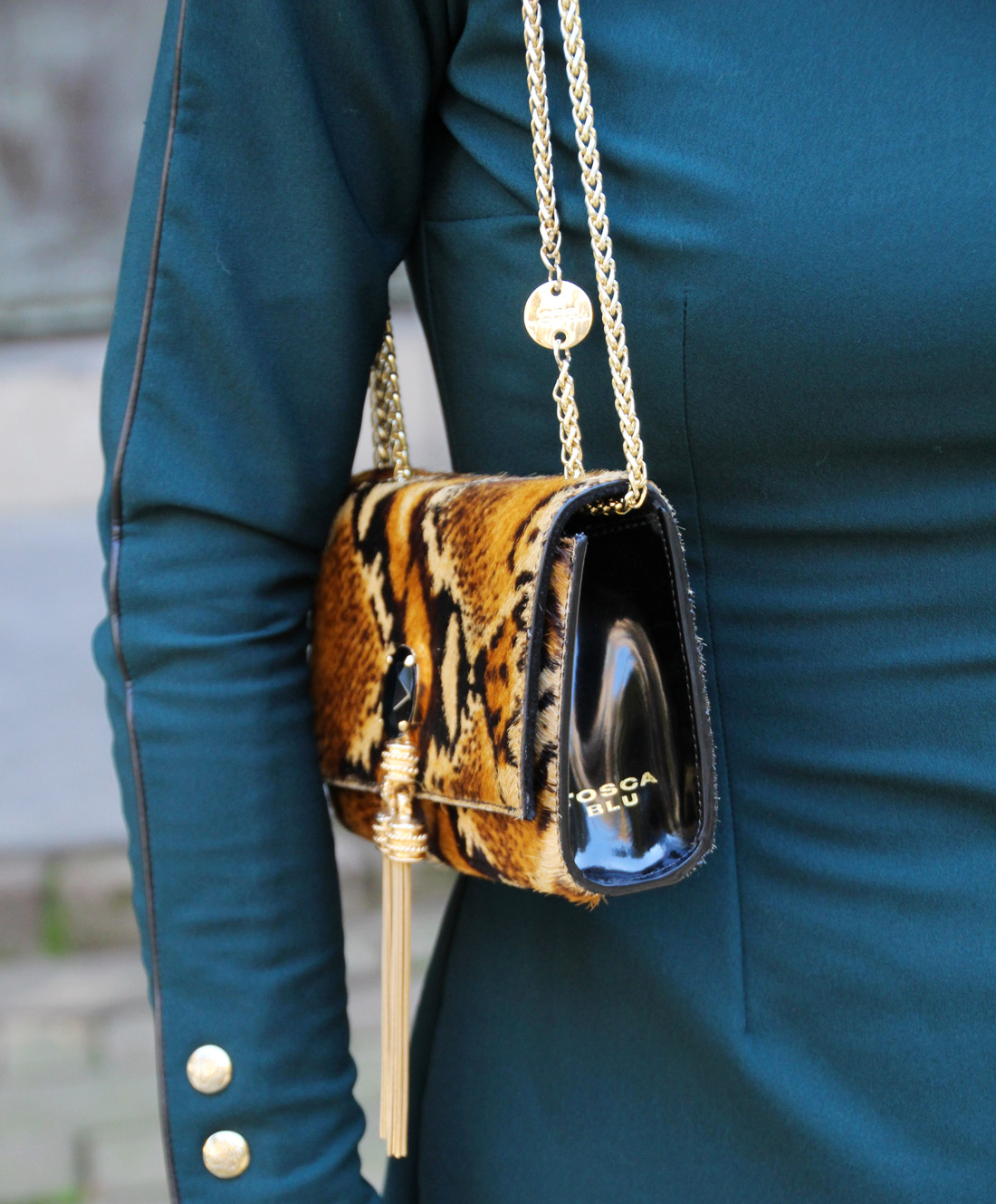 Bag-at-you---Fashion-blog---Tosca-Blu-Bag---Favorite-phyton-shoulder-bag