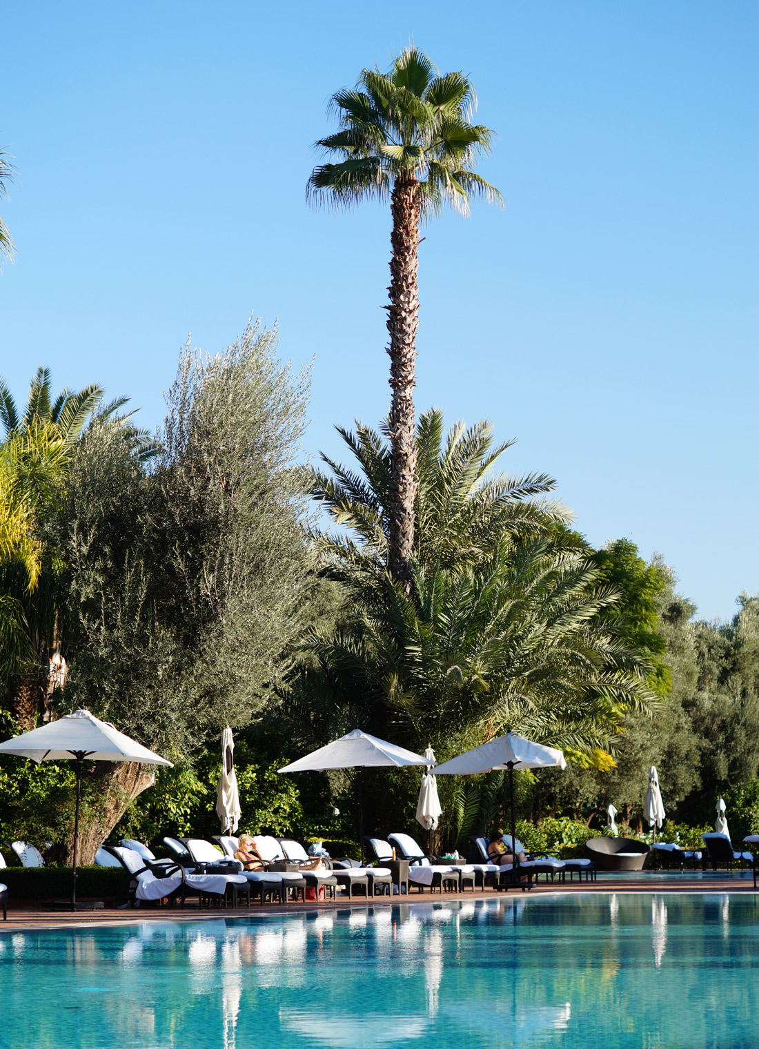 Bag-at-You---Fashion-blog---La-Mamounia-Hotel-Marrakesh---Pool-palms