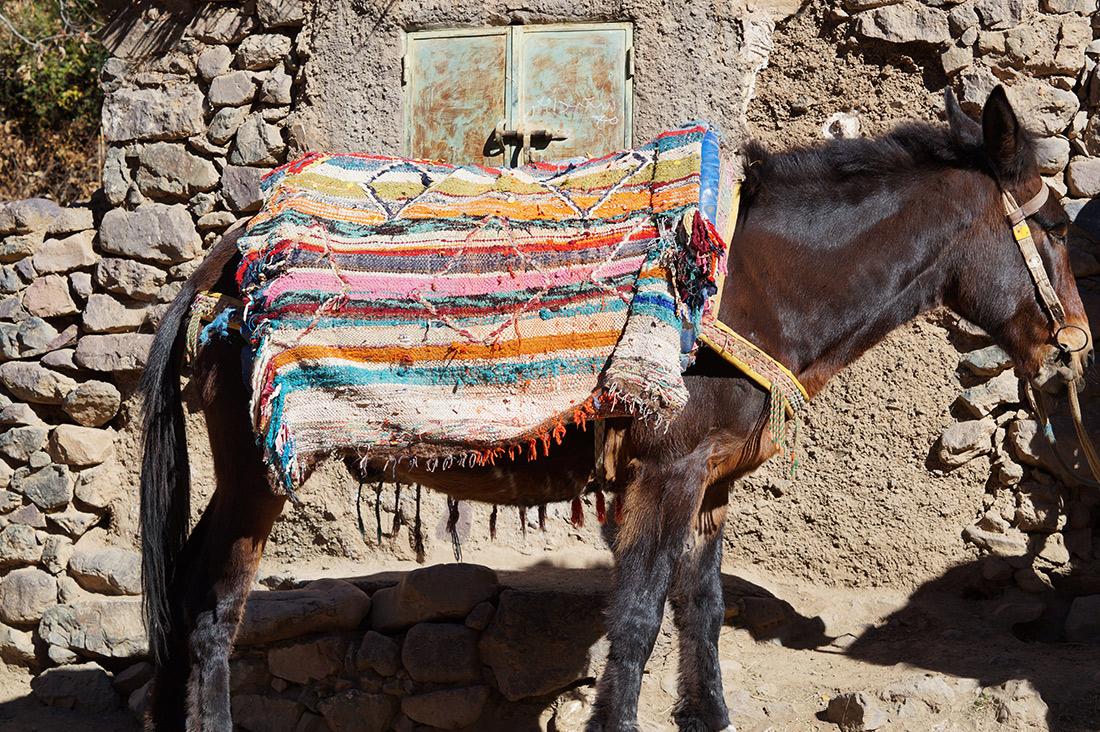 Bag-at-You---Fashion-blog---Tour-Marrakesh---Berber-taxi-High-Atlas