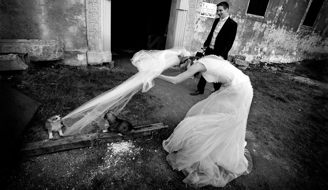 Crazy Wedding Bloopers Bag At You