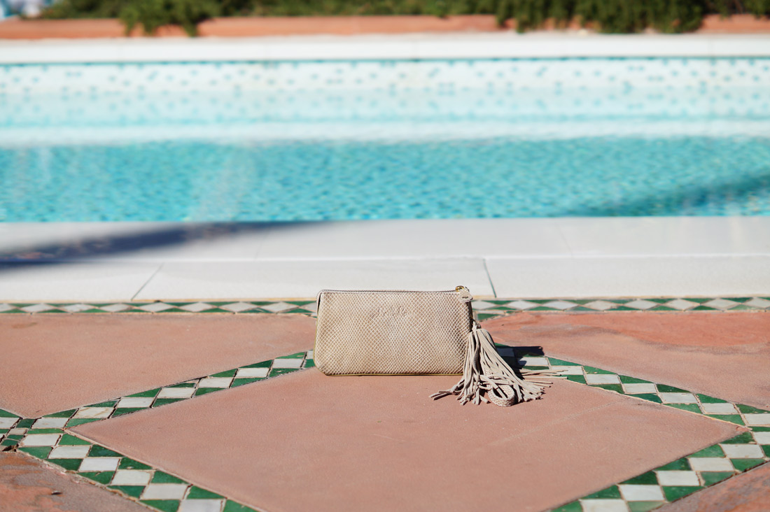 Bag-at-you---Fashion-blog---By-Lou-Lou-Classy-Cobra-purse