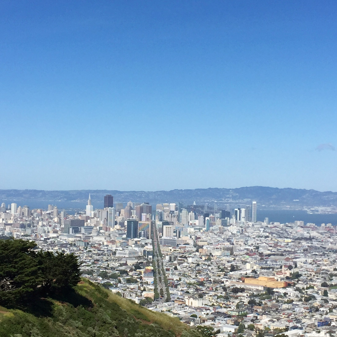 Bag-at-you---View-from-Twin-peaks-in-San-Francisco