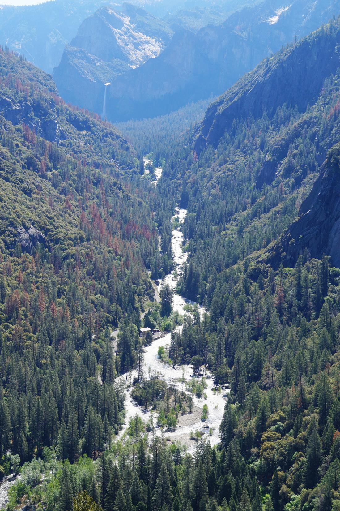 Bag-at-you---Travel-blog---Yosemite-Nation-Park---California
