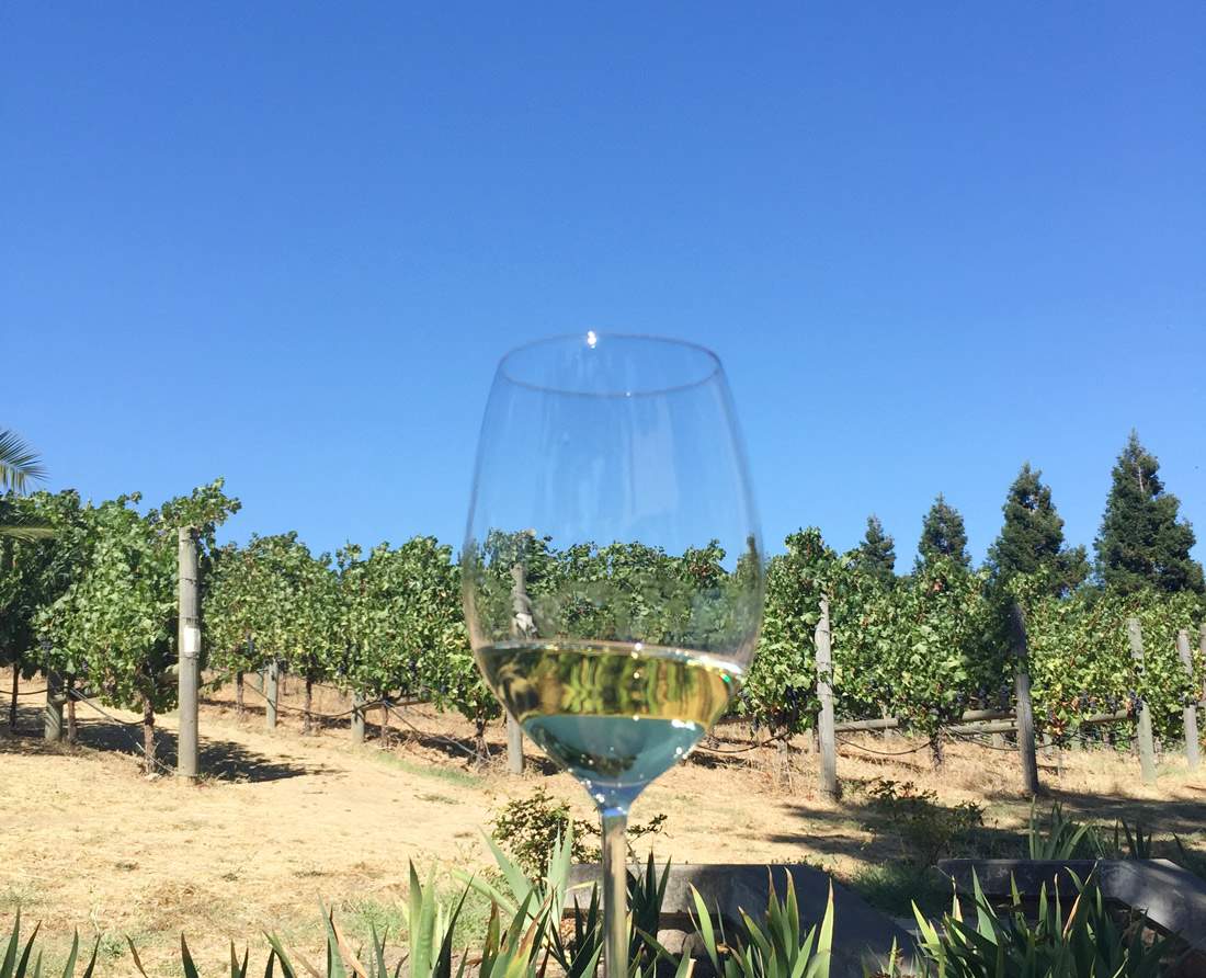 Bag-at-you---Travel-blog---Wine-Country---Napa