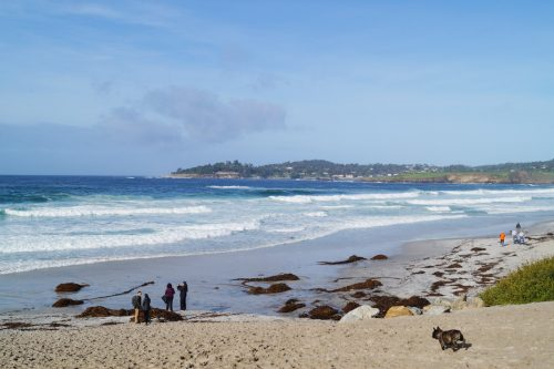 bag-at-you-travel-blog-carmel-by-the-sea