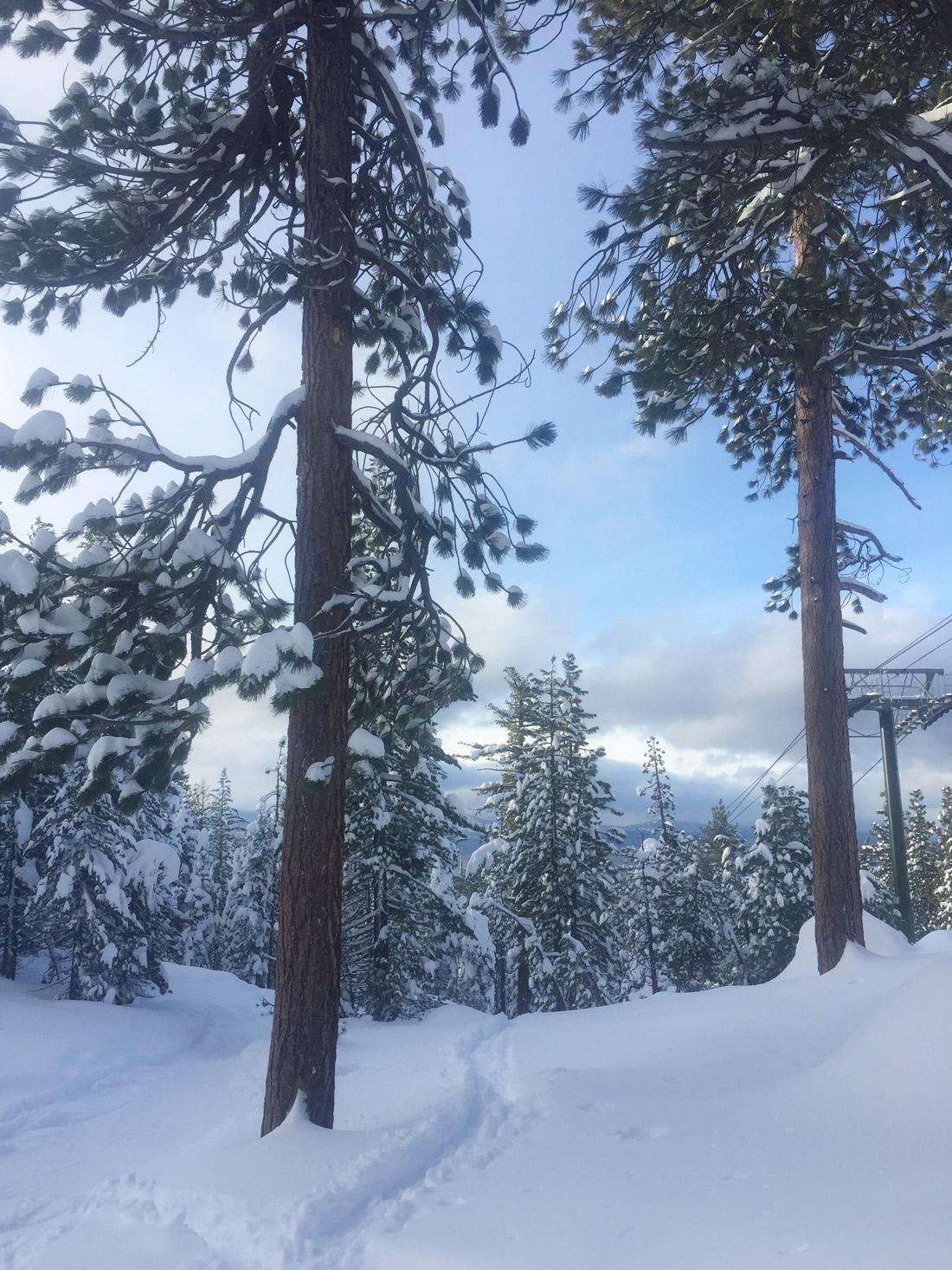 Bag-at-you---Travel-blog---Ski-in-California