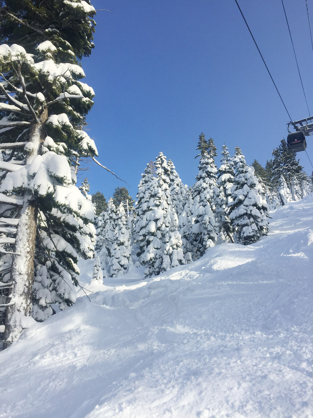 Bag-at-you---Travel-blog---Snow-in-Lake-Tahoe