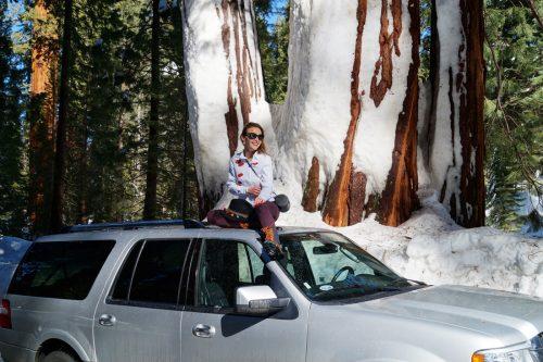 Bag-at-you---Travel-blog---Sequoia-National-Park