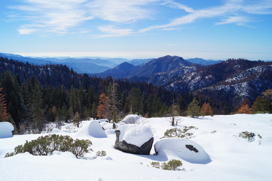 Bag-at-you---Travel-blog---View-from-Sequoia-National-Park