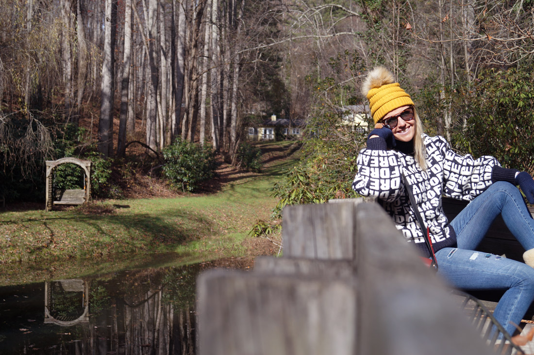 Bag-at-you---Travel-blog---Guest-at-Yellow-House-on-Plott-Creek-Rd