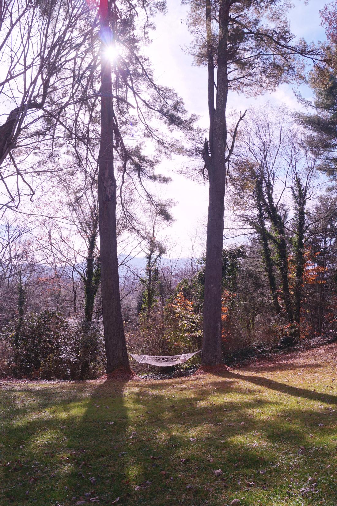 Bag-at-you---Travel-blog---Yellow-House-on-Plott-Creek-Rd---Asheville